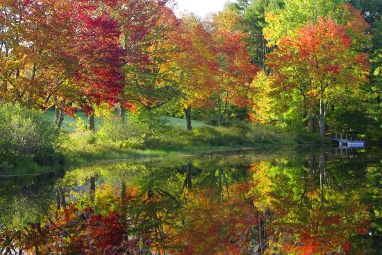 A Leaf Peeping Guide to New England
