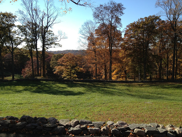 Fall Day Trip – New Canaan, Connecticut and Philip Johnson's Glass House