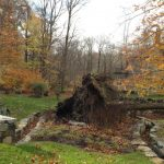Surviving Sandy and Helping in the Aftermath