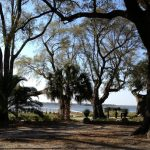 Just Back From…Charleston