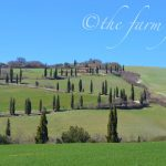 Posting from The Farm Files ~ Off the Beaten Path in Tuscany