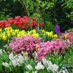 On My Radar Screen – Happy First Weekend in May!!
