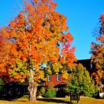 Wednesday Wanderlust ~ Autumn in New England