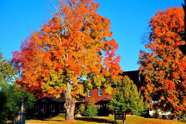 Wednesday Wanderlust ~ Autumn in New England