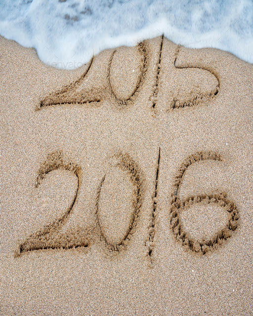 Reflecting on 2015 and Welcoming 2016