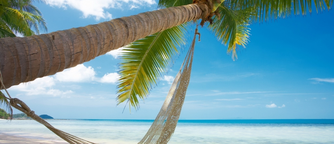 beach-hammock-tropical-1920×1200-wallpaper448447