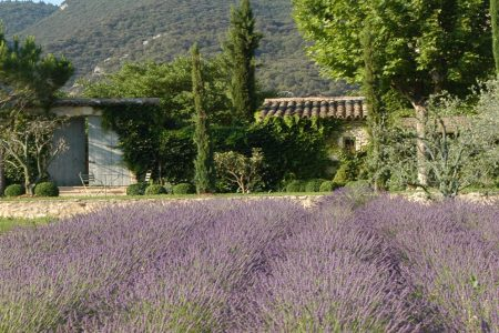 Dreaming of… Summer in Provence at La Bastide de Marie