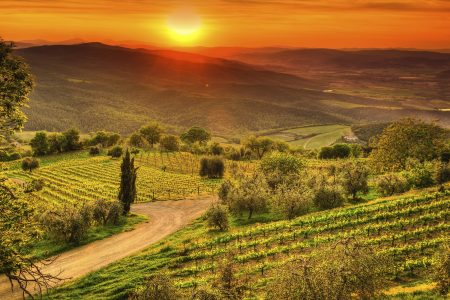 A Dream Trip to Tuscany ~ Coast, Country and City