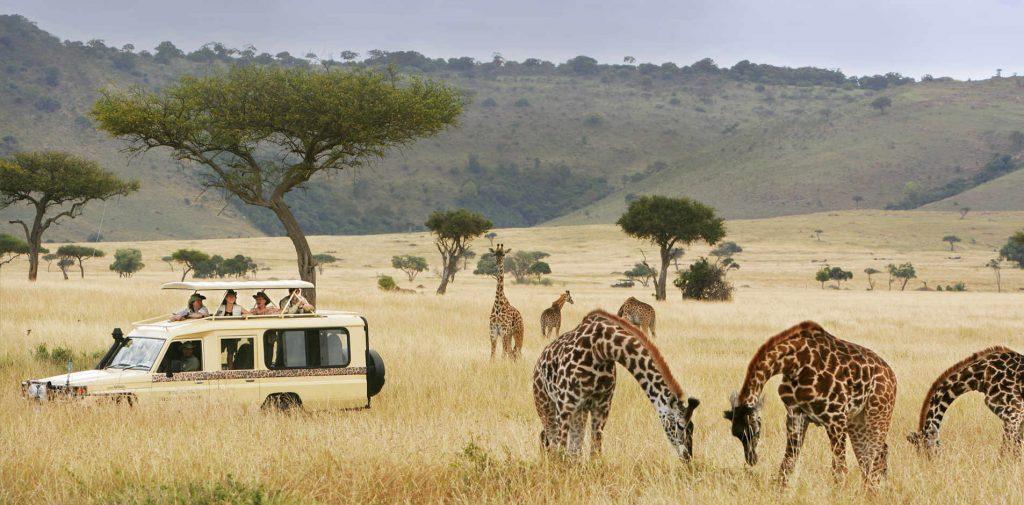 classic-safaris-ext-header